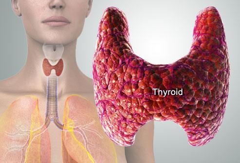 тиреотоксикоз и гипотиреоз отличия