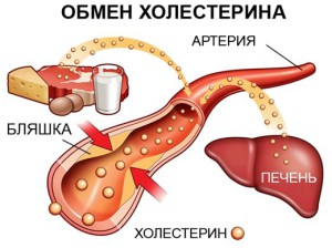 статины при диабете