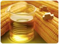масло кукурузное для больных диабетом